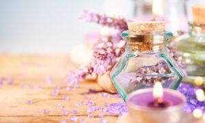 lavender oil source